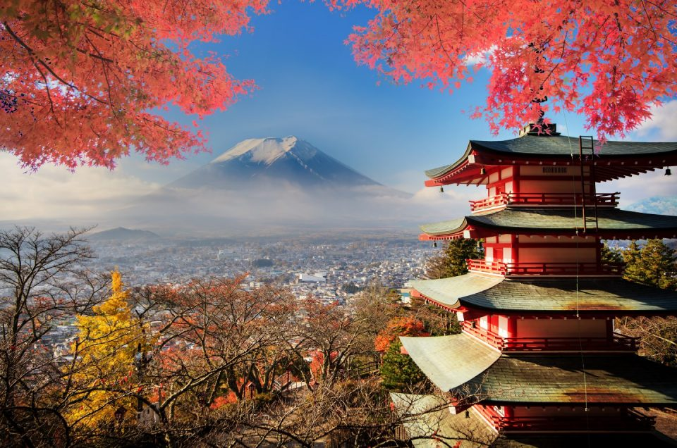Top 5 Things to Do in Japan While You Still Can (Muestra)