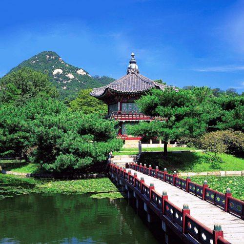 Seoul Your Soul (Muestra)