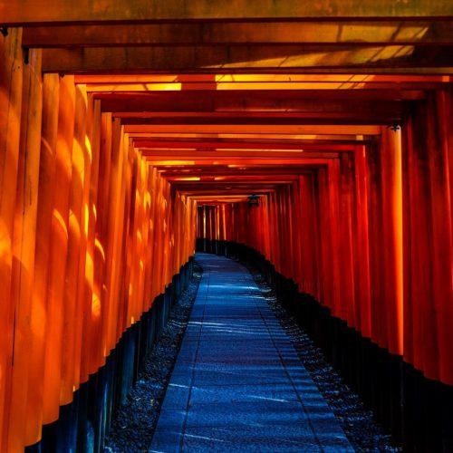 Discover Japan (Muestra)